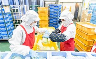 ヨシケイ福山 製造スタッフの仕事 食材を箱詰め